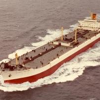 Η ευθύνη της πλοιοκτήτριας εταιρείας για τη μεταφορά προϊόντων άλλης εταιρείας, χωρίς νομιμοποιητικά έγγραφα και η προστασία του δικαιώματος ιδιοκτησίας